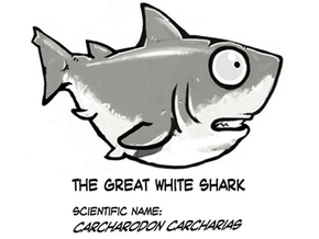 Breedingkit White Shark in Full Color Sandstone