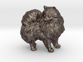 Custom Pomeranian Dog in Polished Bronzed Silver Steel