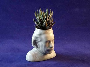Einstein Ceramic Planter in Gloss Celadon Green Porcelain: Medium