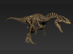 Acrocanthosaurus skeleton (1:18) in White Natural Versatile Plastic