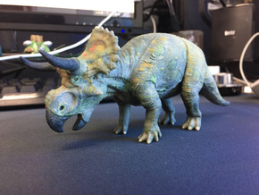 Nasutoceratops middle size (color) in Full Color Sandstone