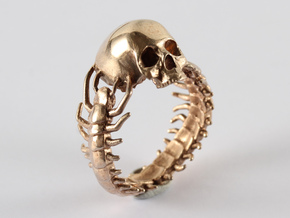 Scolopendra in Polished Bronze