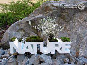 """NATURE"" Planter V1.0. (14 cm or 22 cm) in White Natural Versatile Plastic: Small"