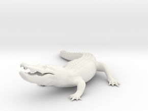 Printle Thing  Alligator - 1/24 in White Natural Versatile Plastic