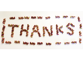 "DNA GGAGAAAGTGCCTAT ""THANKS"" 5pcs in Full Color Sandstone"