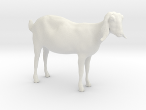 3D Scanned Nubian Goat 3cm Hollow in White Strong & Flexible