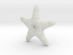 TMStarfish in White Strong & Flexible