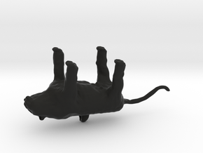WhitetigerKeyChain in Black Natural Versatile Plastic