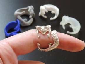 Kitty Ring in Polished Silver
