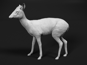 Kirk's Dik-Dik 1:20 Standing Male in Smooth Fine Detail Plastic