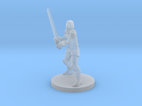 Lady Fighter in Smooth Fine Detail Plastic