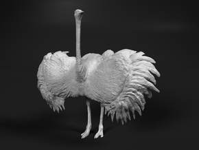 Ostrich 1:64 Wings Spread in Smooth Fine Detail Plastic