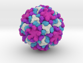 Nudaurelia Capensis ω Virus in Full Color Sandstone