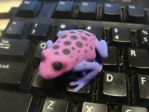 Purple Poison Dart Frog in Full Color Sandstone