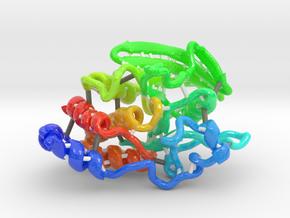 Protein Tyrosine Phosphatase Mu (PTPμ) in Glossy Full Color Sandstone