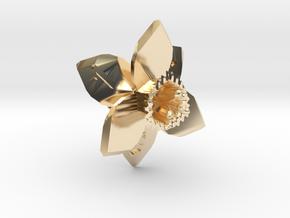 Daffodil D6 in 14K Gold