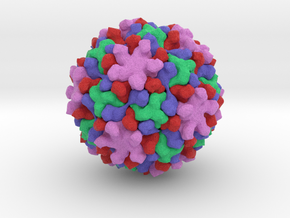 Helicoverpa Armigera Stunt Virus in Full Color Sandstone