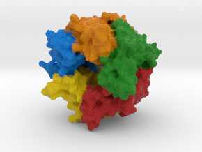Acetylcholine Receptor in Full Color Sandstone