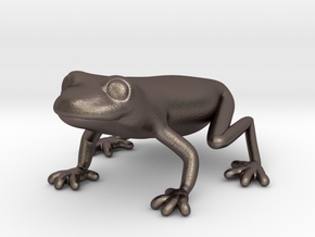 Red Eyed Tree Frog in Polished Bronzed Silver Steel