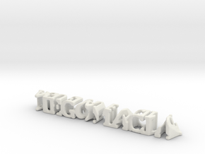 3dWordFlip: diego macia/agueda lencina in White Natural Versatile Plastic