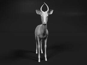 Impala 1:6 Male Juvenile in White Natural Versatile Plastic