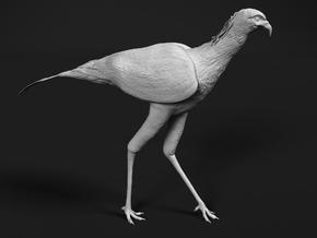 Secretarybird 1:9 Walking in White Natural Versatile Plastic