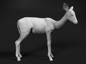 Impala 1:22 Female Juvenile in White Natural Versatile Plastic
