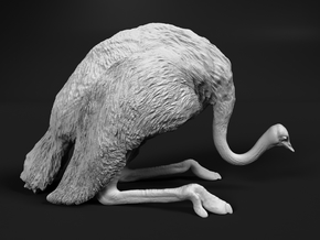 Ostrich 1:16 Guarding the Nest in White Natural Versatile Plastic