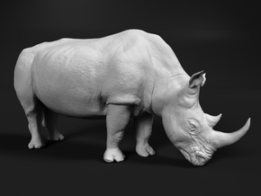 White Rhinoceros 1:6 Grazing Female in White Natural Versatile Plastic