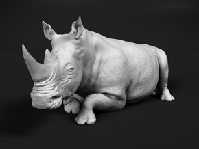 White Rhinoceros 1:96 Lying Female in Smooth Fine Detail Plastic