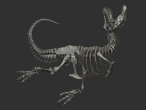 Tyrannosaurus skeleton( Black beauty / 1:16 )  in White Natural Versatile Plastic