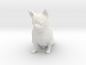 Scanned Chihuahua Dog -887 in White Natural Versatile Plastic