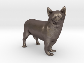 Scanned Chihuahua Dog -890 in Polished Bronzed Silver Steel