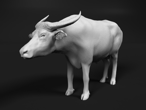 Domestic Asian Water Buffalo 1:24 Standing Male in White Natural Versatile Plastic