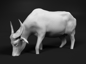 Domestic Asian Water Buffalo 1:24 Grazing in Water in White Natural Versatile Plastic