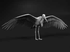 Marabou Stork 1:25 Wings Spread in Smooth Fine Detail Plastic