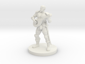 Male Half Elf Bard in White Natural Versatile Plastic