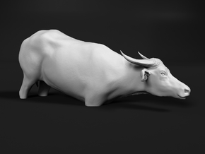 Domestic Asian Water Buffalo 1:25 To Deeper Water in White Natural Versatile Plastic