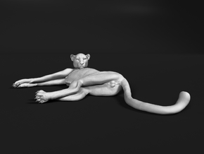 Cheetah 1:87 Lying Male in Smooth Fine Detail Plastic