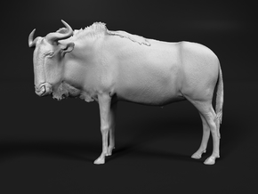 Blue Wildebeest 1:6 Standing Male in White Natural Versatile Plastic