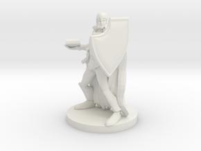 Eldritch Knight in White Natural Versatile Plastic
