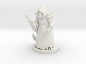 Lizard Folk Druid in White Natural Versatile Plastic