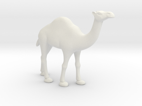 Printle Thing Dromedary - 1/24 in White Natural Versatile Plastic