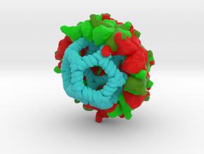 Pariacoto Virus in Full Color Sandstone