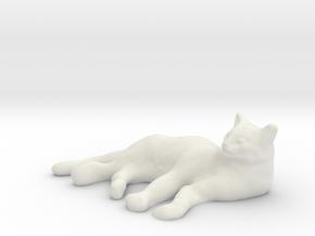 1/8 Sleeping Cat for Diorama in White Natural Versatile Plastic