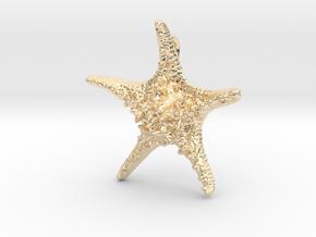 Knobby Starfish Pendant in 14K Yellow Gold