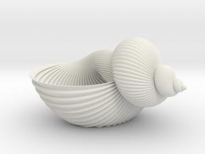 Shell Flower Pot in White Natural Versatile Plastic