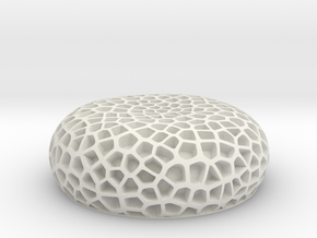 Coral Luminescent-Great Barrier Reef in White Natural Versatile Plastic
