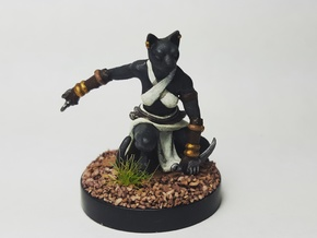 Tabaxi Rogue (Female) in Black Hi-Def Acrylate