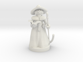 Kitten Wizard in White Natural Versatile Plastic